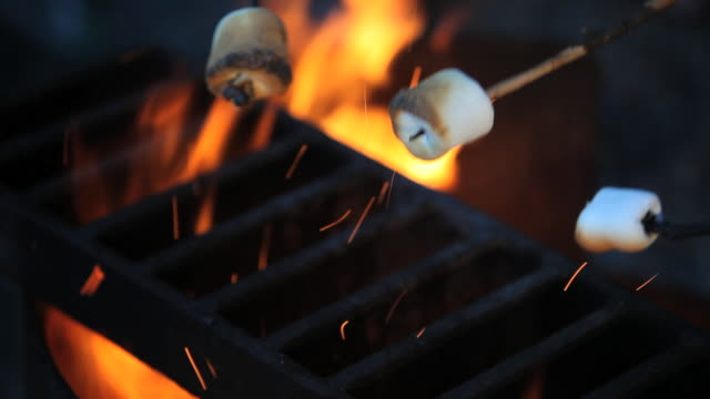 c/u marshmellows roasting on fire - roasted stock videos & royalty-free footage