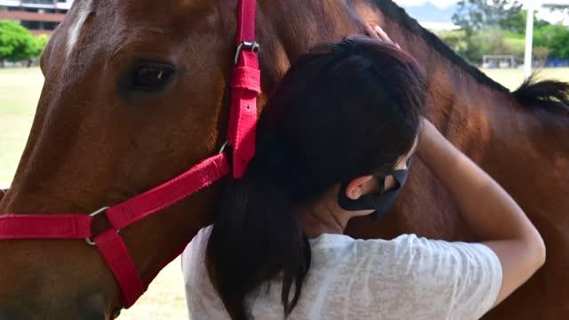 CRI: En Costa Rica, los caballos curan dolores y tristezas