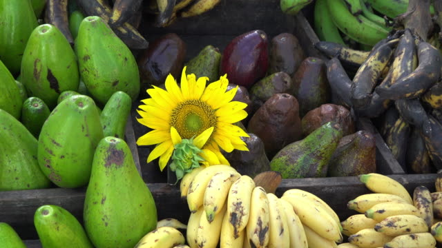 cuba: a fruit selling cart in the city - religious symbol stock videos & royalty-free footage
