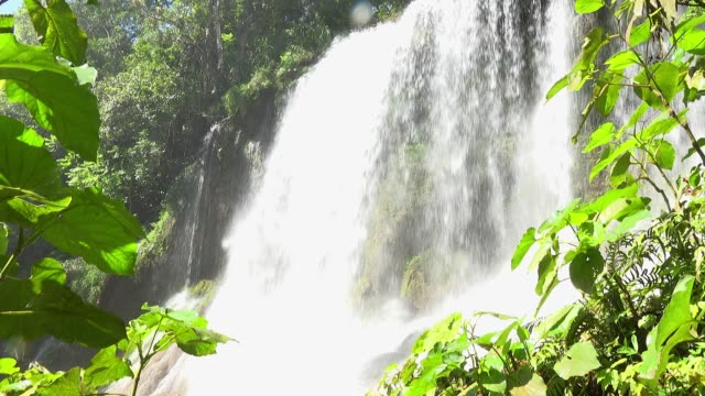 cuba, beauty in nature, 'el nicho' waterfall - eco tourism video stock e b–roll