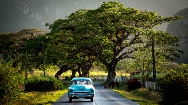 cuba / classic car on scenic road - cuba stock videos & royalty-free footage