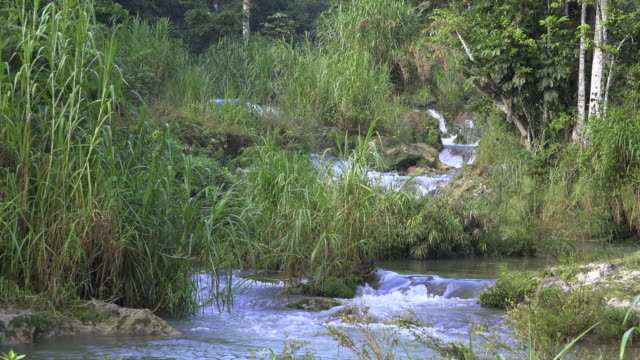 cuba tourism: 'el nicho' beauty in nature at the popular natural reserve in the 'escambray' mountain range used for eco-tourism in the province of sancti spiritus - sancti spiritus province stock videos and b-roll footage