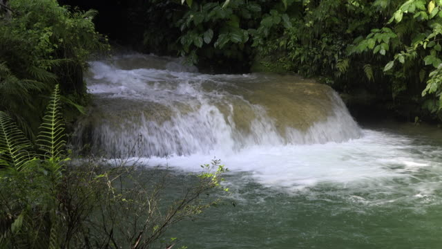 vídeos de stock, filmes e b-roll de cuba tourism: 'el nicho' beauty in nature at the popular natural reserve in the 'escambray' mountain range used for eco-tourism in the province of sancti spiritus - eco tourism