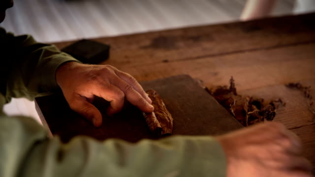 cuba: travel : cigar being hand-rolled - sigaro video stock e b–roll