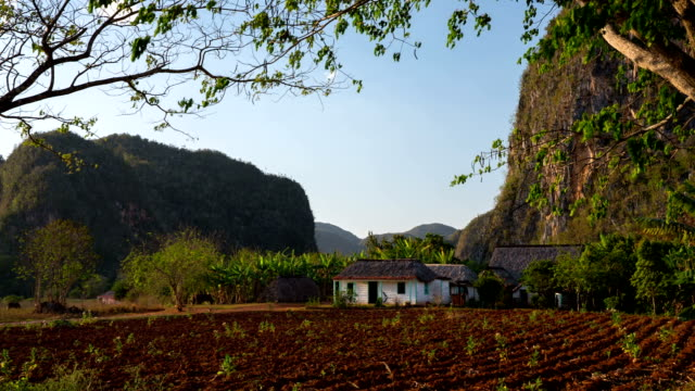 Cuba: Travel : Farmhouse in Vinales Valley, Cuba