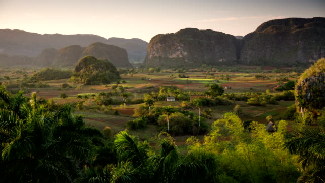 vidéos et rushes de cuba: voyage: paysage dans la valle de viñales, cuba, avec des collines de mogotes traditionnelle de forme ronde - vallée