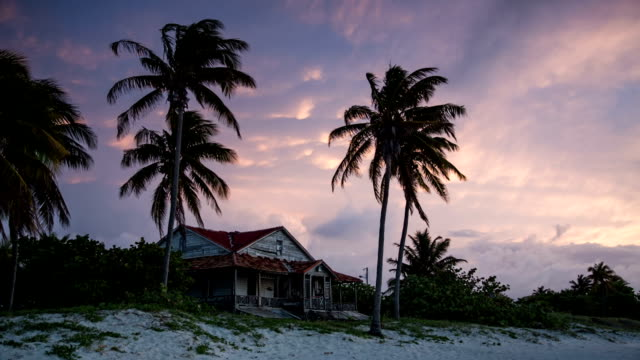cuba: travel : old house with palm trees in varadero - varadero stock videos and b-roll footage