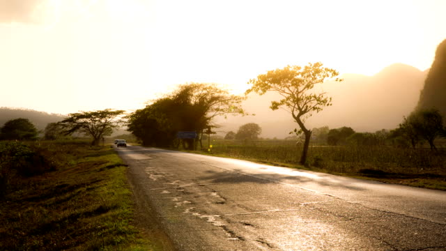 cuba: travel : rural road in cuba - back lit video stock e b–roll