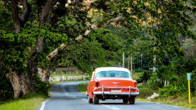 cuba: travel : vintage car on country road - collector's car stock videos and b-roll footage
