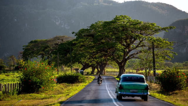 cuba , vintage car driving on rural road - cuba stock videos and b-roll footage