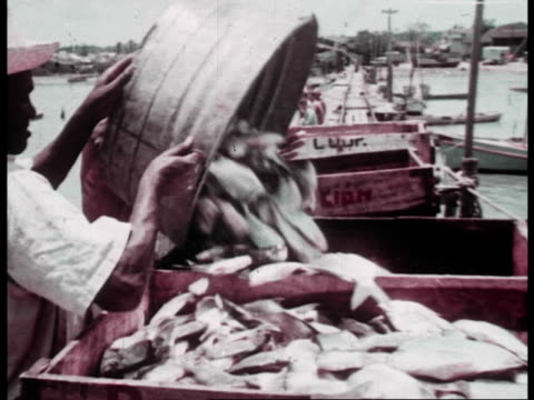 cuban fishermen building boats and catching and selling fish at the new cooperative - agricultural cooperative stock videos and b-roll footage