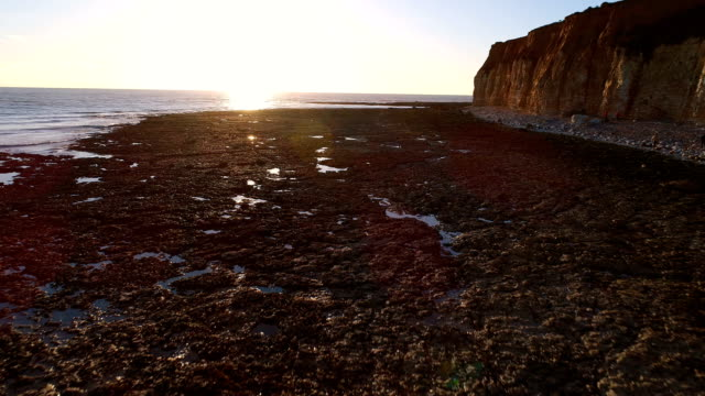 cuckmere coastline sunset - イーストサセックス点の映像素材/bロール