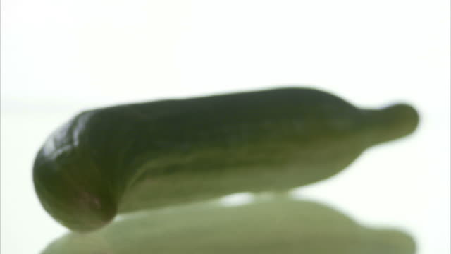 a cucumber. - cucumber stock videos and b-roll footage