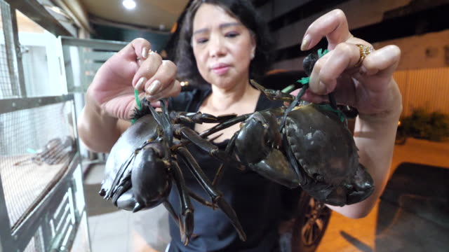 culinary and street food in medan. - clam seafood stock videos and b-roll footage