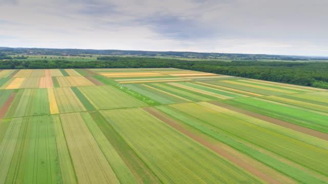 vídeos de stock, filmes e b-roll de aerial campos cultivados na zona rural - pulverizando