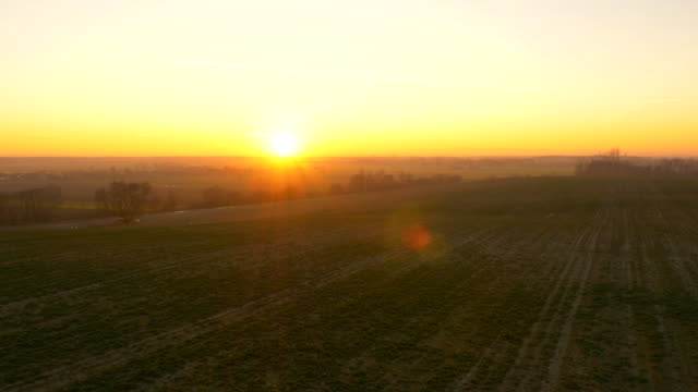 aerial felder in den sonnenuntergang - multikopter stock-videos und b-roll-filmmaterial