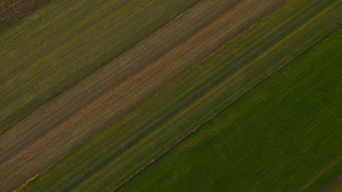 vídeos y material grabado en eventos de stock de antena cultivado campos - campo arado