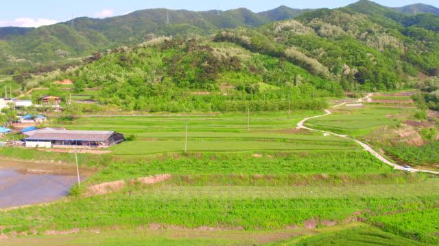 cultivated land / sangju-si, gyeongsangbuk-do, south korea - north gyeongsang province stock videos & royalty-free footage