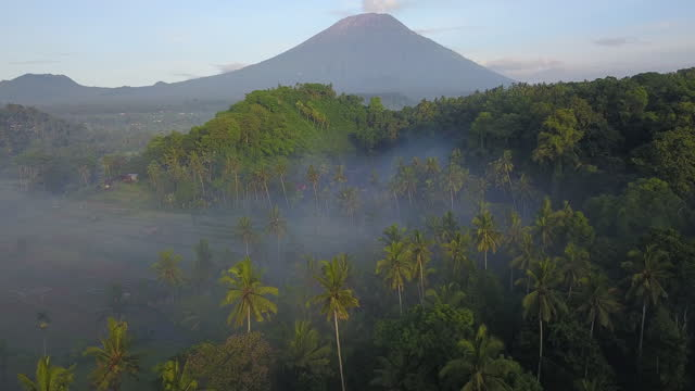 cultivated lands and mountain / bali, indonesia - rustic stock videos & royalty-free footage