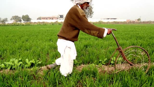 coltivazione di terra per sollevare colture - dhoti video stock e b–roll