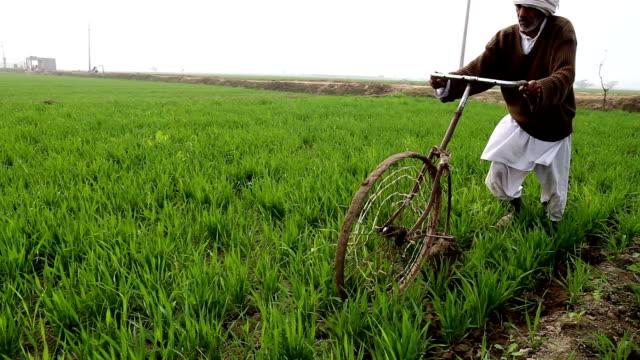 養殖の地形を上げるために重作 - 頭飾り点の映像素材/bロール