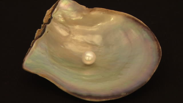 Zoom in Extreme close shot of a cultured pearl