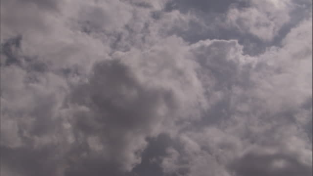 Cumulus clouds drift across a gray sky. Available in HD.