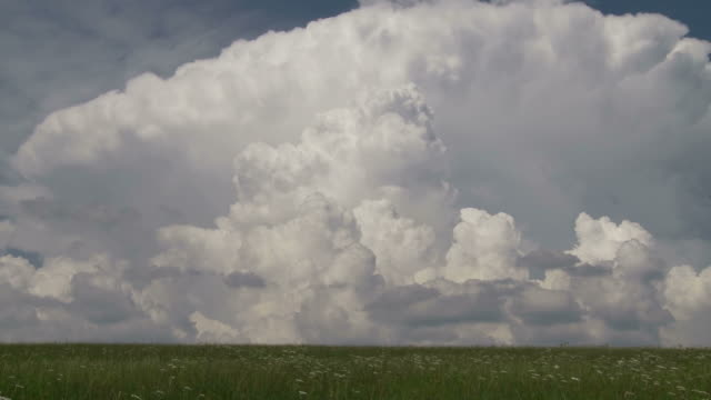 cumulus clouds growing, preparing to turn into thunderstorm