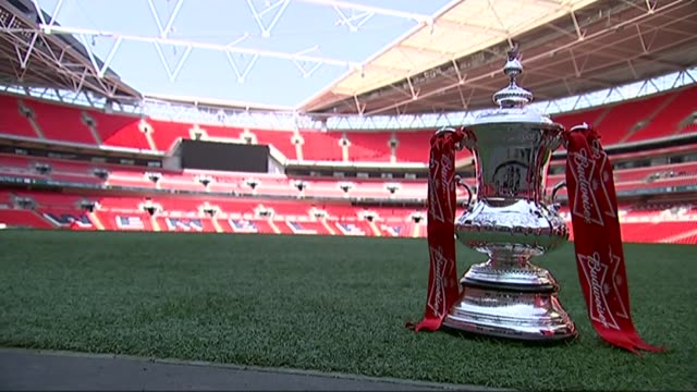 stockvideo's en b-roll-footage met fa cup trophy on pitch with budweiser ribbons - fa cup