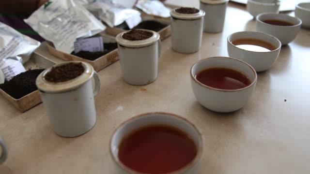 vidéos et rushes de cups with black tea. darjeeling tea is a tea from the darjeeling district in west bengal, india. unlike most indian teas, darjeeling tea is normally... - thé noir