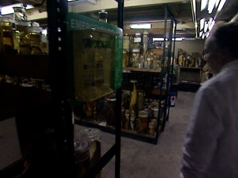 vídeos y material grabado en eventos de stock de a curator enters a storeroom full of jars of preserved specimens in the natural history museum london 1999 - museo de historia natural museo