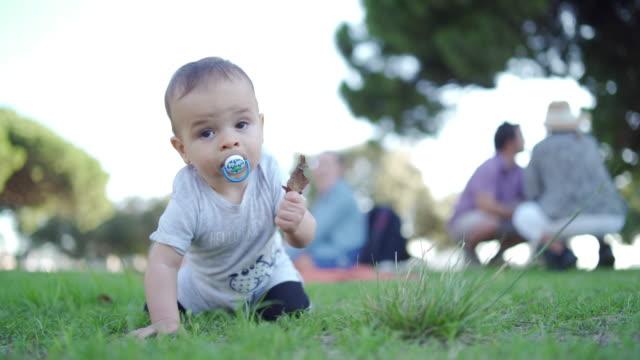 curious baby boy - camminare a gattoni video stock e b–roll