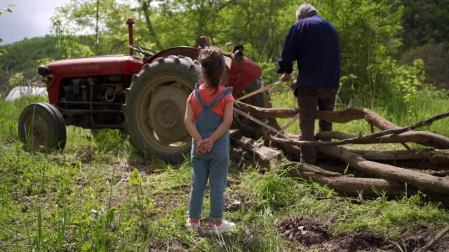 vídeos y material grabado en eventos de stock de curiosa nieta observando a su abuelo cómo ata el tronco del árbol para el tractor - escena no urbana