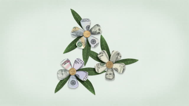 us currency money flowers - growing finances animated - symbol stock videos & royalty-free footage