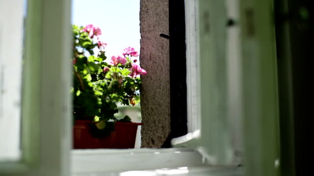 のカーテンの後ろに古いウィンドウ - インテリア点の映像素材/bロール