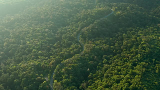 curve road on the mountain aerial view - mountain pass stock videos & royalty-free footage