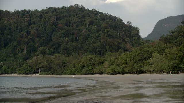 Curved Beach & Rainforest / Malaysia