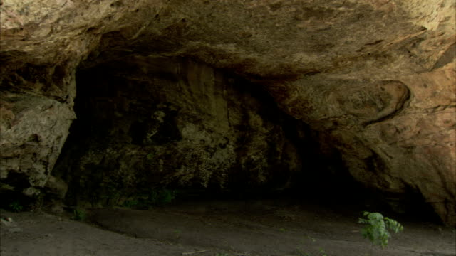 curved cave walls form natural archways at pedra pintada cave in brazil. available in hd. - roraima state stock videos and b-roll footage