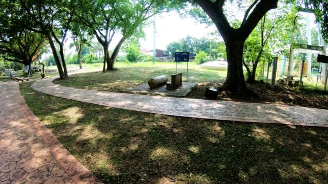 緑の木々 の小道を歩いて曲線 - 歩道点の映像素材/bロール