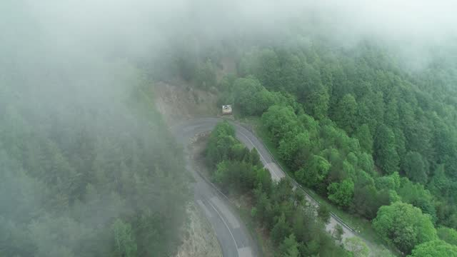 curvy mountain road, surrounded with pinaceae forest, while fog besiege the area - pinaceae stock videos & royalty-free footage