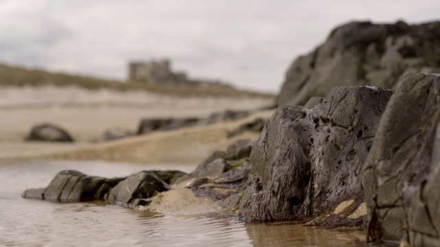 cus pools on a beach next to a castle - tide pool stock videos & royalty-free footage