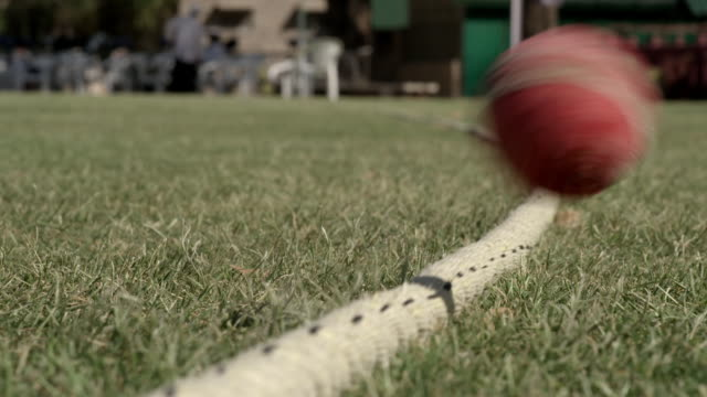 cus umpire tosses a coin, cricket ball goes out - コイントス点の映像素材/bロール