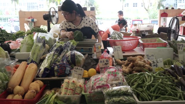 customers buy vegetables at stutong wet market in kuching, sarawak, malaysia, on wednesday, april 14 a vendor measures the weight of vegetables on... - サラワク州点の映像素材/bロール