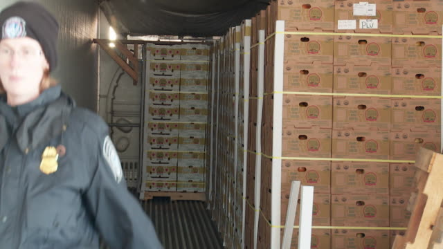 / customs agent inspects a shipment of produce / forklift unloading pallet off truck