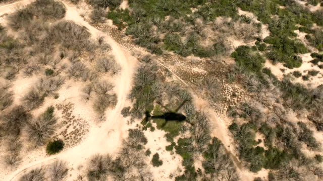 Customs and Border Protection Black Hawk helicopter flies along the USMexico border on February 21 2018 near McAllen Texas Federal border agents were...