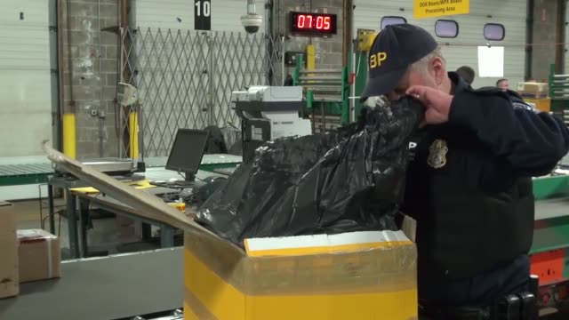 us customs and border protection officers and us immigration and customs enforcement agents inspect express consignment packages for counterfeit... - department of homeland security stock videos & royalty-free footage