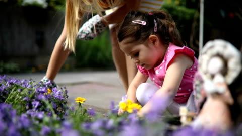 söt och härlig dotter lärande trädgårdsskötsel från mor - blomrabatt bildbanksvideor och videomaterial från bakom kulisserna