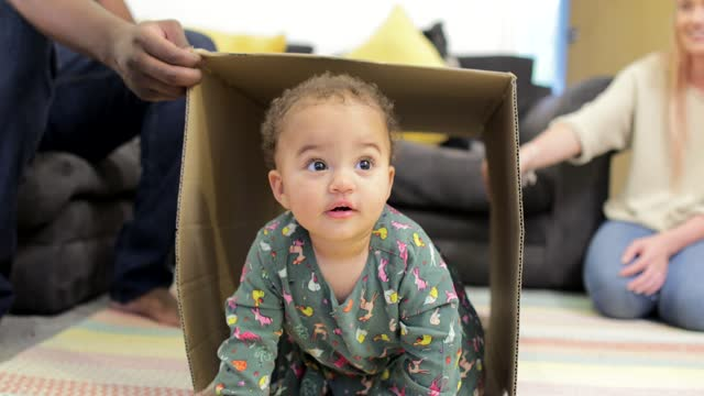 cute as a button! - cardboard box stock videos & royalty-free footage