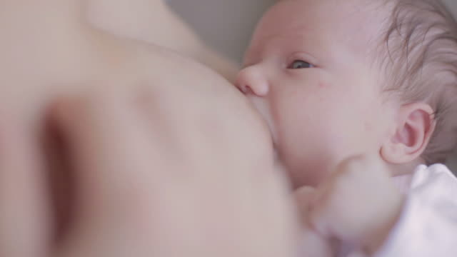 cute baby girl breastfeeding - breastfeeding stock videos & royalty-free footage