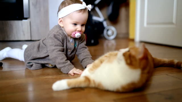 Cute Baby Girl Playing With The Cat